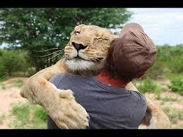 pets hugs